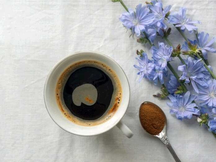 benefits of drinking chicory coffee